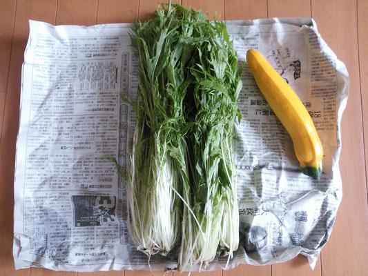 お隣さんからの朝採り野菜