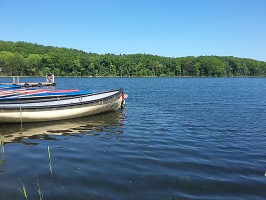 Rudern auf dem Wolgast See