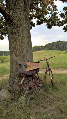 Fahrradtour-Pause am Schmollensee