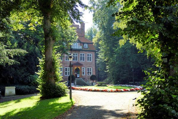 Alter Baumbestand am Schloss Ritzebüttel in Cuxhaven