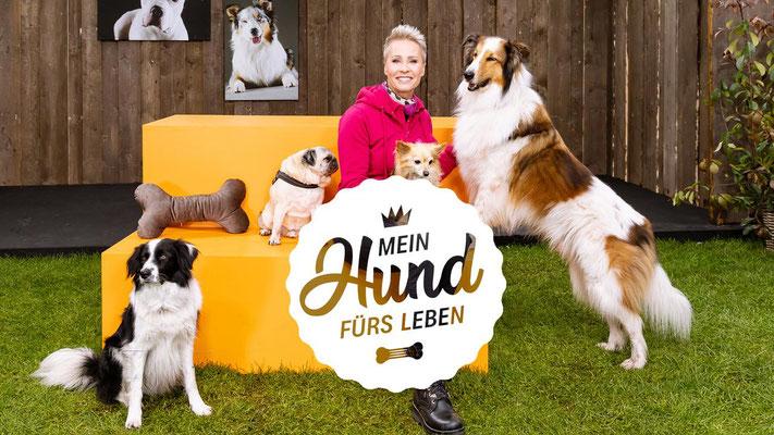 Copyright ZDF