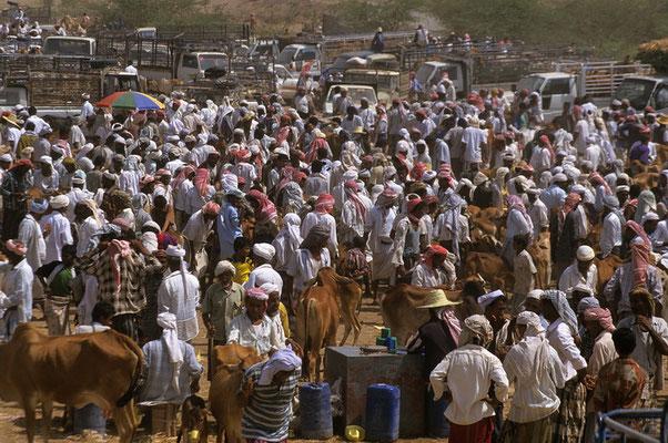 In Bayt al Faqih erlebe ich den größten und farbenprächtigsten Markt des Jemen.