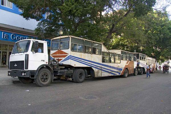 """Die so genannten """"Kamelbusse"""" sind ein originelles Transportmittel in Kuba. Hier bekam ich gleich zwei davon vor die Linse. In einem dieser urigen Busse werden bis zu 400 Personen transportiert."""