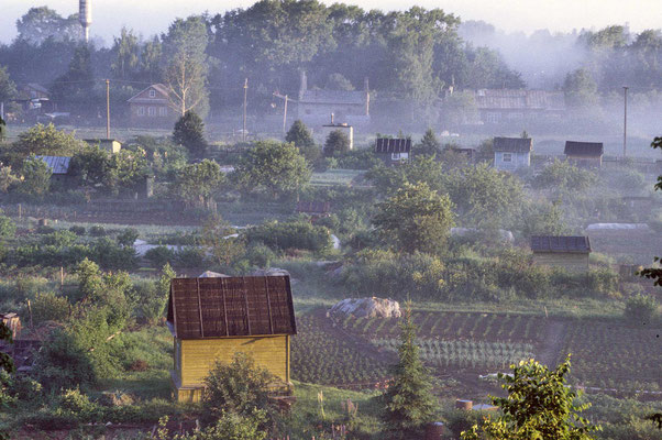 Am Morgen wabern die Nebelschwaden mystisch über Wiesen, Gärten und Felder und nur ganz langsam setzt sich die Sonne durch.
