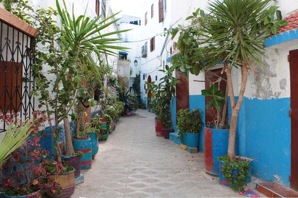 Gasse in der Altstadt von Asilah.