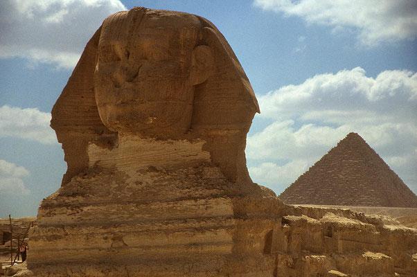Gizeh: Die gewaltige Sphinx –  seit Jahrtausenden untrennbar mit den Pyramiden verbunden.