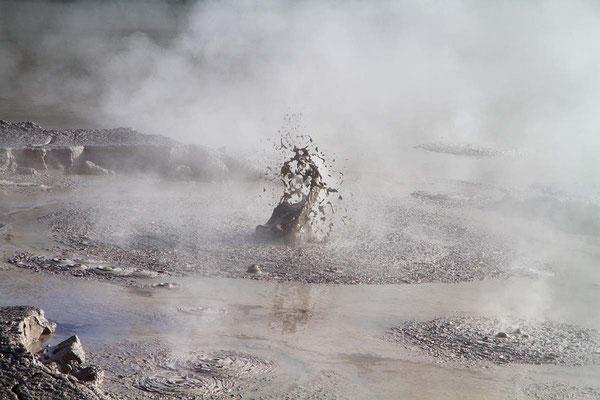 Bei Rotorua kocht, brodelt und dampft die Erde unablässig. Es ist eines der geothermisch aktivsten Gebiete der Erde.