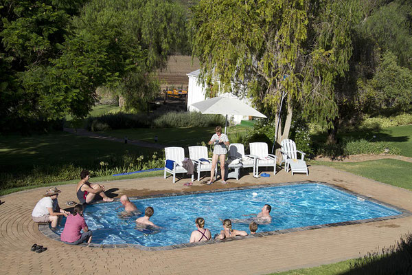 Pool bei der Swartberg-Lodge.