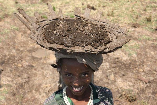 Viehdung wird gesammelt, getrocknet und als Brennmaterial verwendet.