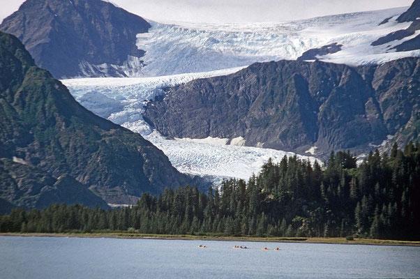 In der Ferne im Kenai-Fjord taucht hinter einer Insel der mächtige Holgate – Gletscher auf.
