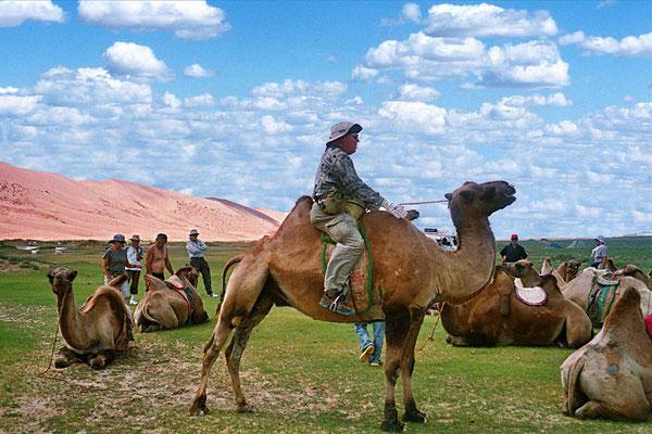 Probereiten in der Wüste Gobi.