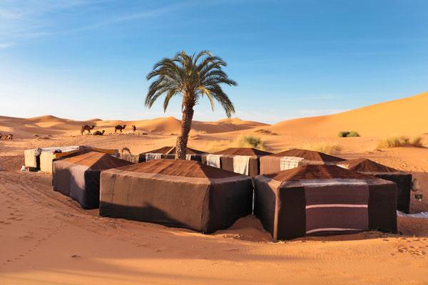 Unser Camp zwischen den großen Dünen inmitten der Wüste.