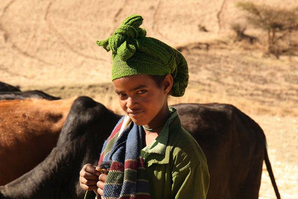 Nördlich von Addis-Abeba führt ein Mädchen die Rinder über das Getreide. So wird die Frucht gedroschen.