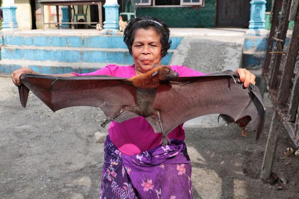 Flughunde werden auf Sumatra von den Batak verzehrt und gelten als Heilmittel bei Lungenkrankheiten