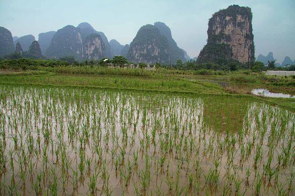 Reizvolle Landschaft bei Yangshuo.