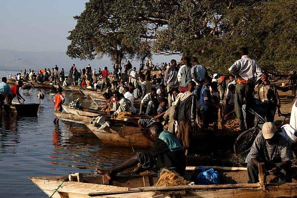 Fischmarkt am Awasa - See.