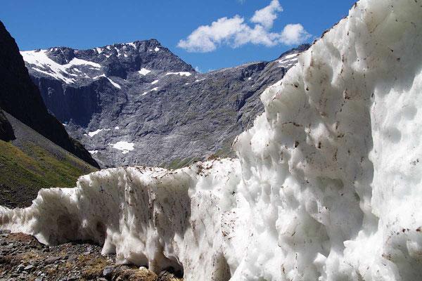 Gletscher auf dem Weg zum Milfort Sound.