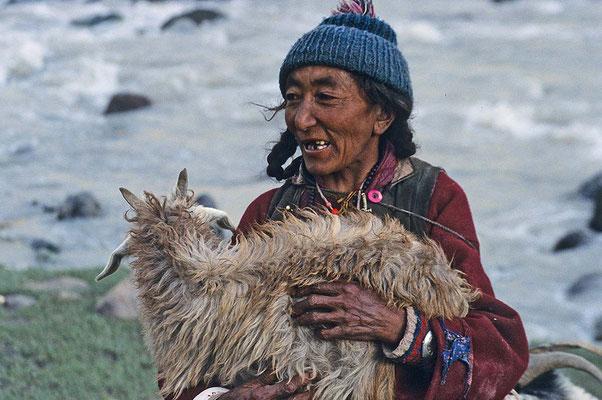 Eine Frau holt am Abend ihre Ziegen von der Weide - ein unwilliges Tier muss sie tragen.