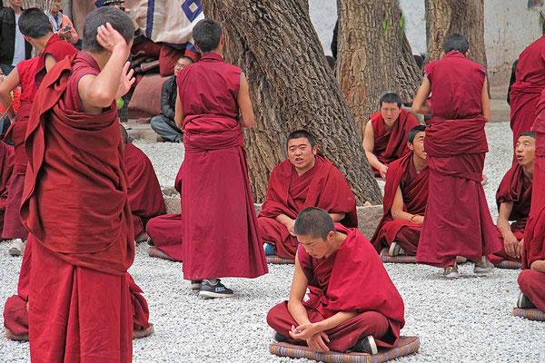 Mönchs - Debatte im Sera - Kloster. Eine Zeremonie, die auch eine Art Prüfung für die jungen Novizen ist.