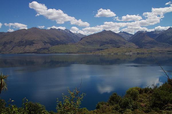 Bei Neuseelands Seen glaubt man stets, dass irgendwer ein Fass Tinte hineingeschüttet hätte.
