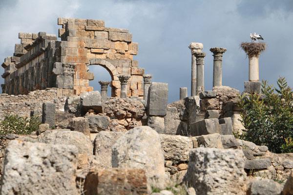 Volubilis ist eine archäologische Stätte bei Meknes. Hier sind die am besten erhaltenen Monumente aus der römischen Antike in diesem Teil Nordafrikas zu finden.