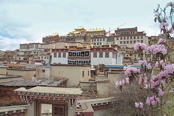 """Blick auf das Kloster Songzanlin von Zongdian, das auch gerne als der """"Kleine Potala"""" bezeichnet wird."""