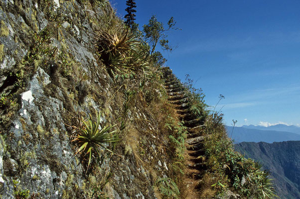 """Der """"Große Berg"""": """"Machu Picchu"""" erfordert einiges an Kondition. Auf einem sehr gut erhaltenen Inka-Weg steigen wir auf."""