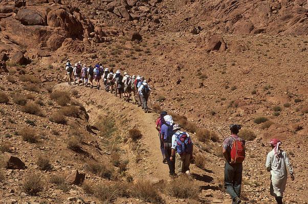 Auf interessanten Pfaden geht es durch die steinige Bergwüste des Sinai.