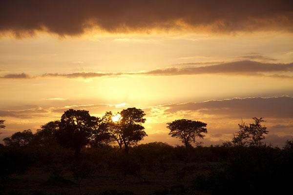 Sonnenaufgang auf der Fahrt in den Krüger-Nationalpark.
