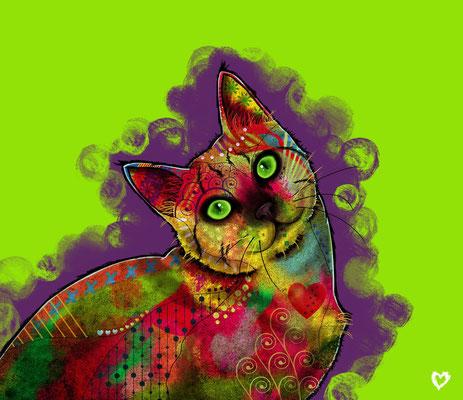 Mina. Kat portret. Paintshop Pro.