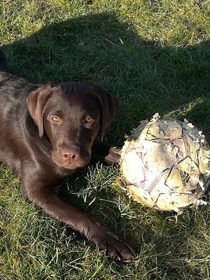 """Pepper (Caya): """"Der Ball müsste mal wieder aufgepumpt werden!"""""""