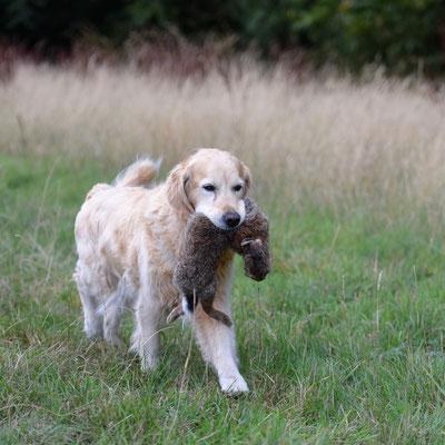 Greta - ganz stolz mit 13,5 Jahren
