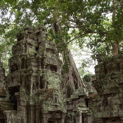 Indochina Memos 2015 - Angkor #16 (Copyright Martin Schmidt, Fotograf für Schwarz-Weiß Fine-Art Architektur- und Landschaftsfotografie aus Nürnberg)
