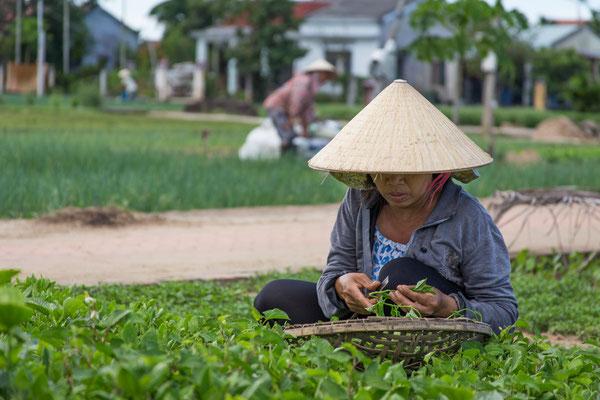 Indochina Memos 2015 - Hoi An #12 (Copyright Martin Schmidt, Fotograf für Schwarz-Weiß Fine-Art Architektur- und Landschaftsfotografie aus Nürnberg)
