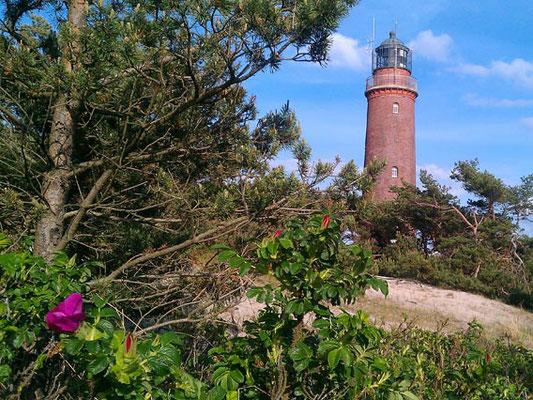 Der Darßer Leuchtturm am Weststrand