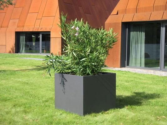 Flora Pflanzbehälter