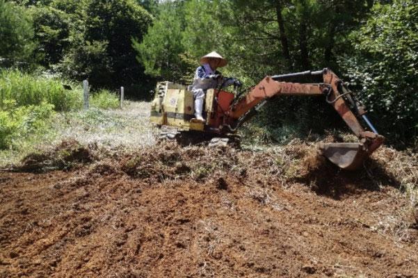 植栽地の根株の除去・耕耘の状況1