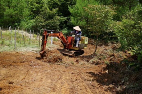 植栽地の根株の除去・耕耘の状況2