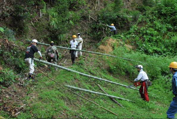 孟宗竹を伐採集積場への運搬の様子1