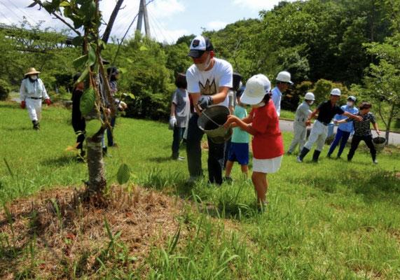 バケツリレーの最後は樹木に水をたっぷりかける
