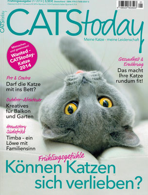 CATStoday