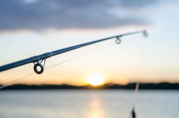 Pêche sportive