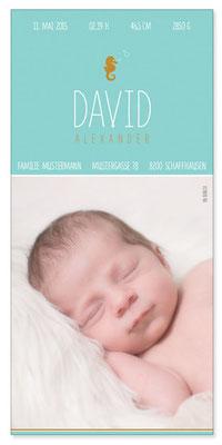 David Alexander: 1-seitig, 105×210 mm   Foto: © Nicole Ruffner-Racheter, www.babyaugenblick.ch