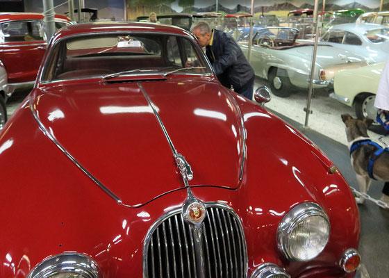 Aspang_Automobilmuseum_2020-09-19_119