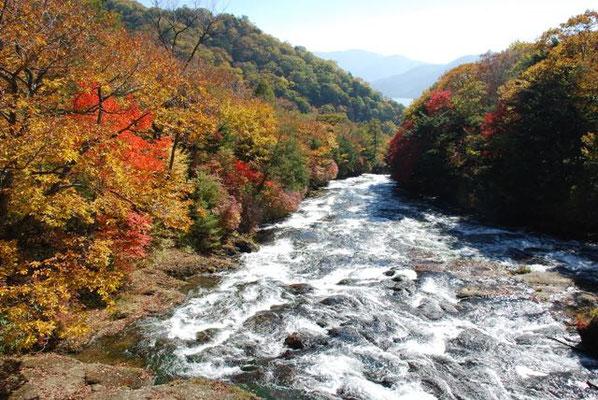 Yukawa River Nikko National Park