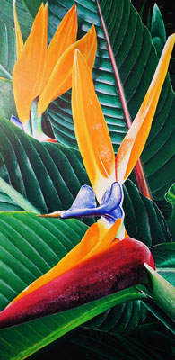 Strelitzia/Bird of Paradise (2016, Acryl auf Leinwand, 60x120cm)