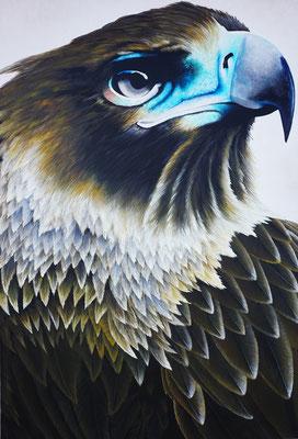 Aquila (2017, Acryl auf Leinwand, 80x120cm)