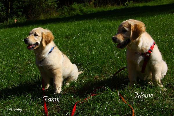 Schwieriges Unterfangen: Fanni und Maisie auf ein Bild zu bannen