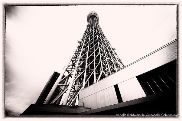 Skytree - 600m in only seconds