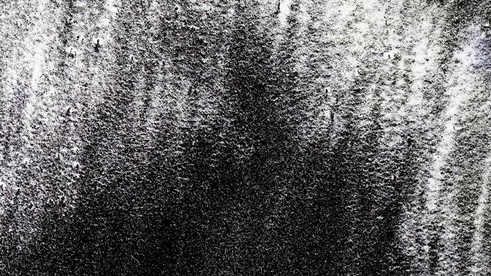 Pollenstruktur